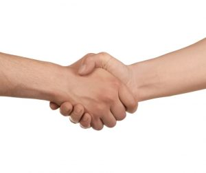 White male hands in a handshake, implying agreement and cooperation. White background. Image credit: DragonFly (iStock).